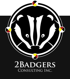 2Badgers Consulting Inc